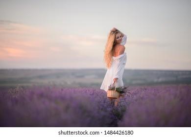 Woman walk on the lavender field.