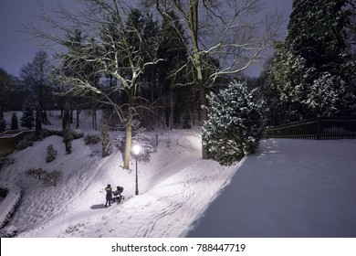 Woman is walking with the baby carriage in the old winter park  in the B?evnov Monastery in Prague during the late evening. Fresh snow cavers everthing.