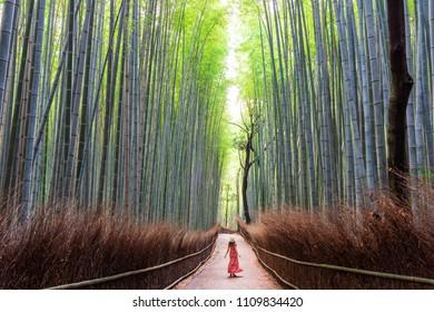 Woman walking in Bamboo forest, Arashiyama, Japan