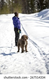 A woman is walking the dog in a beautiful winter day.