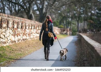 Frau, die im Park mit einem Hund auf Leine geht