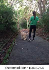 woman walking goldendoodle