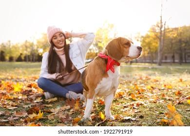Woman walking her cute Beagle dog in autumn park