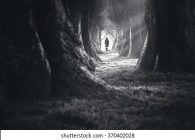 woman walking into the deep dark forest