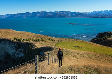 Woman walking on Kaikoura Peninsula Walkway, New Zealand