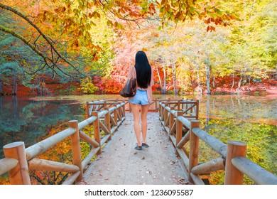 Woman is walking on pier - Autumn landscape in (seven lakes) - Yedigoller Park Bolu, Turkey