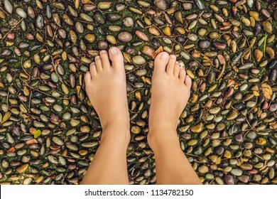 Woman Walking On A Textured Cobble Pavement, Reflexology. Pebble stones on the pavement for foot reflexology.