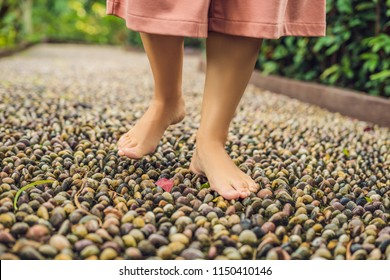 Woman Walking On A Textured Cobble Pavement, Reflexology. Pebble stones on the pavement for foot reflexology