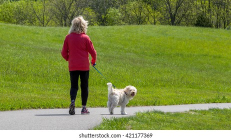 Woman walking a small brown dog on a path in a park on a sunny spring day