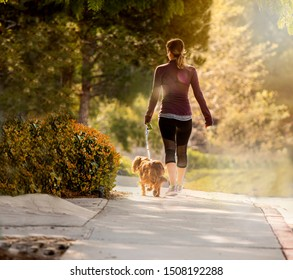 Woman walking with small dog and sunlight and trees in background