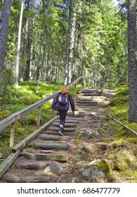 Woman walking steps on forest trail. Finnish national park.