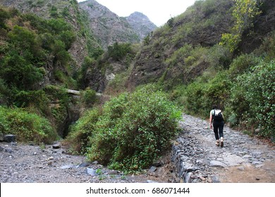 Woman walking through the ravine of Badajoz, Tenerife, peace, calm, serenity, harmony, fullness, well-being, nature, natural, contemplate, meditate, breathe, grow, happiness, tranquility, fulfillment,