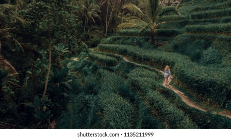 Woman walking through Terrace rice fields in Tegallalang, Ubud on Bali, Indonesia
