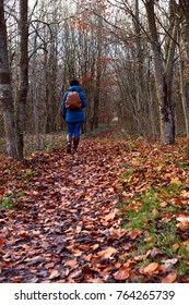 Woman walking through woodland alone, dressed warmly in down jacket and woolly hat. Bare trees have dropped their leaves onto the path and forest floor.