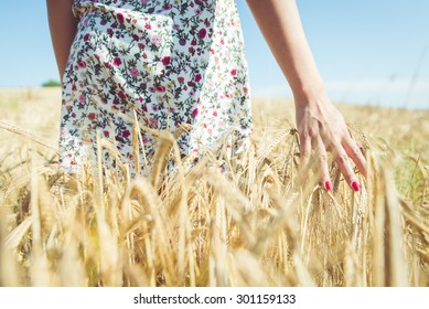 woman walking in the wheat- concept about nature, agriculture and people