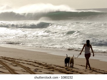 Woman walks her dog on beach at Bonzai Pipeline off of Oahu's North Shore. (image contains noise)