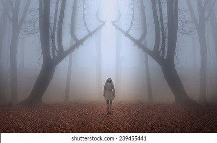 Woman walks the trail of a fairytale magic forest in a foggy autumn day