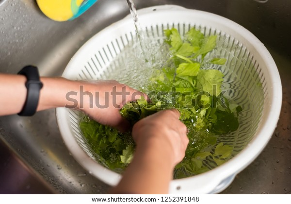 woman washing vegetables in the sink at home