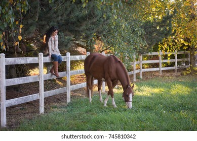 A woman watches her horse as she sits on a fence.
