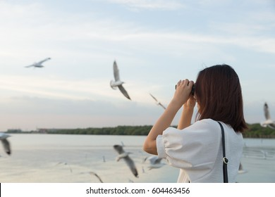 woman watching bird watching by the sea during the evening at sunset.