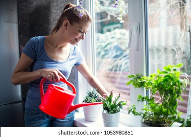 woman watering flowers at home on window