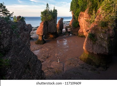 A woman waves from the beach, at the Hopewell Rock National park in New Brunswick, Canada. Taken at sunrise.