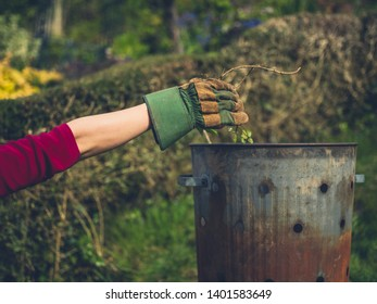 A woman wearing a gardening glove is putting weeds in an incinerator