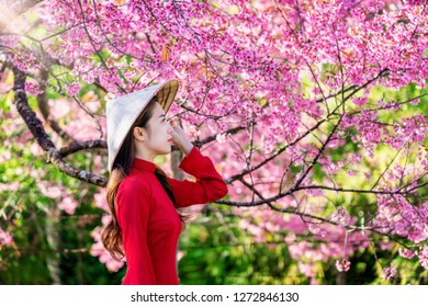 Woman wearing Vietnam culture traditional in cherry blossom park.