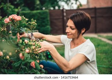 Woman wearing white shirt smiling and pruning roses in the backyard garden