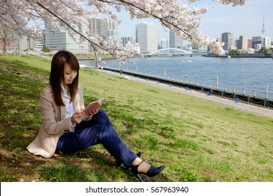 The woman who reads a book under the cherry tree