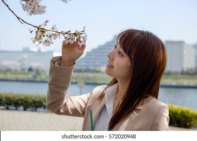 The woman who stares at the cherry blossoms