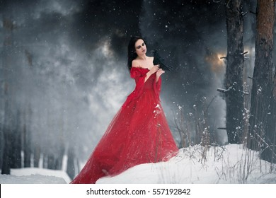 Woman witch in red dress and with raven in her hands in snowy forest. Around can be seen fire and smoke. Her long dress lying on snow and she looks at raven. Snowflakes fall on hem of her dress.