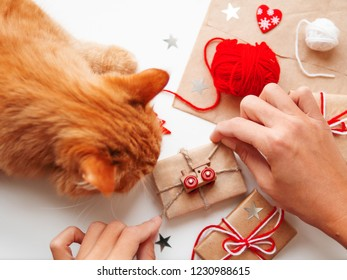 Woman wrapping DIY presents in craft paper. Gifts tied with white and red threads with toy train as decoration. Cute ginger cat shiffing it.