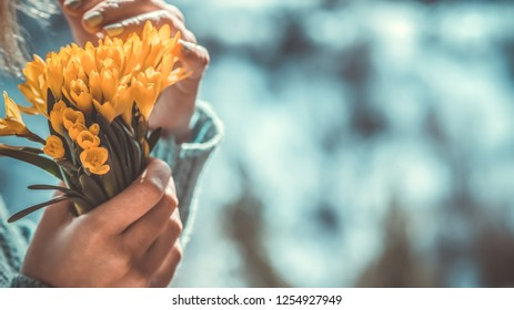 woman with a yellow bouquet of spring flowers in her hands on a snow day