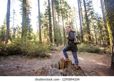 Woman in Yosimite national park near sequoia in California, USA