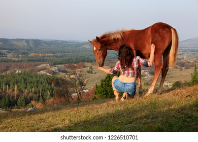 Woman and young horse in the field