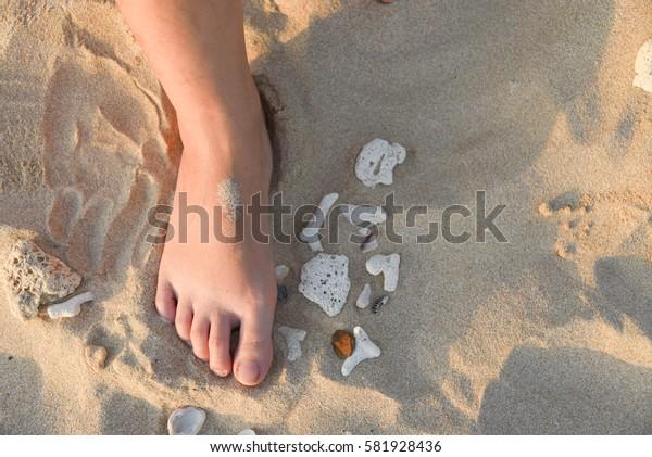 Woman's Bare Feet on the beach. Sand texture with Seashell.
