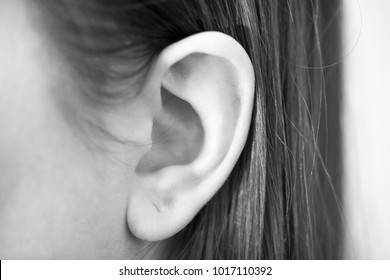 Woman's ear from close perspective