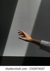 A woman's hand against a gray wall is reaching for the rays of light that fall in the center of the photograph. Shadows draw clear lines on the sides of the picture. Art picture of a woman's hand.