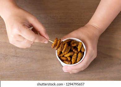 Woman's hand holding disposable cup which containing Silkworm Pupae (Bombyx Mori), Worm fried crispy for take-away. Food Insects for eating as food items is good source of protein edible.