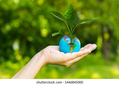 woman's hand holding a globe with a plant