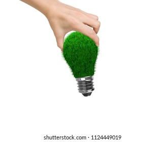 Woman's hand holding one light bulb with green grass, isolated on white background, concept of ECO and green energy.