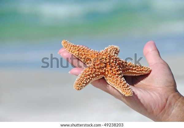 womans-hand-holding-starfish-ocean-600w-