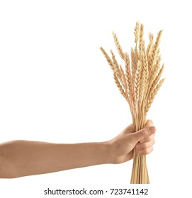 Woman's hand holding wheat on white background
