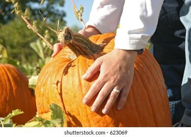 a woman's hand picking a pumpkin