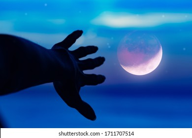Woman's hand reaching for heaven and distant horizon above the ocean water.