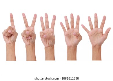 Woman's hand show one, two, three, foe, five fingers up on white background.