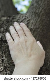Woman's hand touching tree trunk