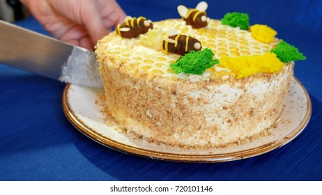 Woman's hands cut the cake with honey cream on blue background. Honey cake. Cake with bees. Cuts the cake