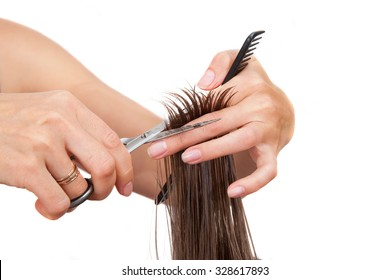 Woman's hands is cutting hairs isolated on white background